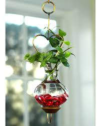 mini heart hanging water garden live plants included vermont