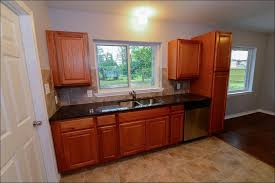 Home Depot Cognac Cabinets - kitchen fabulous hampton bay cabinets reviews hampton bay