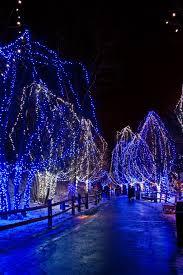 Stone Zoo Christmas Lights by 154 Best Landscape Lighting Trends Images On Pinterest Landscape