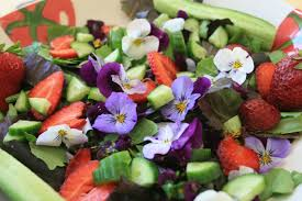 Edible Flowers Edible Flowers Stuff Your Face