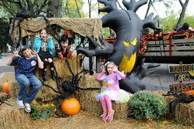 all new boo at the zoo at the bronx zoo new york loves kids