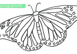 coloring pictures of small butterflies printable butterfly coloring pages top free printable butterfly