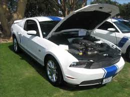 white mustang blue stripes ford mustang gt white with blue stripe