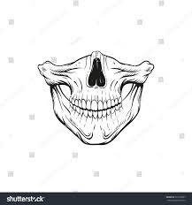skull jaw sketch tattoo design hand stock vector 397593607