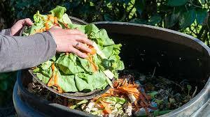 Backyard Composter How To Backyard Compost