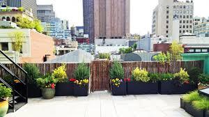 roof garden plants manhattan roof garden paver deck terrace bamboo fence