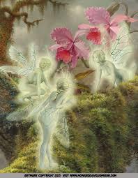 the fairy paintings art gallery the celtic faerie art of howard