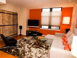 furniture winsome grey and orange living room ideas blue
