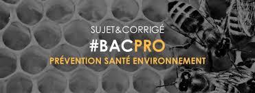 sujet bac pro cuisine bac pro 2018 sujet et corrigé prévention santé environnement
