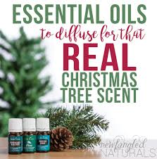how to get that real tree scent with essential oils