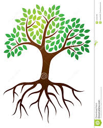 tree roots logo royalty free stock images image 34346189