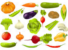 free vegetable garden layout free vegetable garden plan plans garden trends