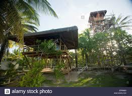 beach houses on stilts among palm trees on the coast of brazil