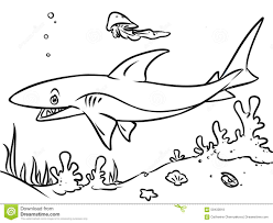 coloring page ocean shark contour illustration stock illustration