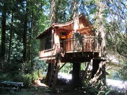 Best Treehouse Interesting Simple Tree House Design Without Walls Ideas And