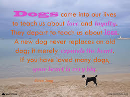 grieving the loss of a pet quote erica jong dogs come into our lives to your tribute
