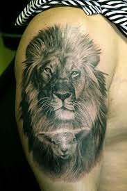 lion tattoos and designs page 49