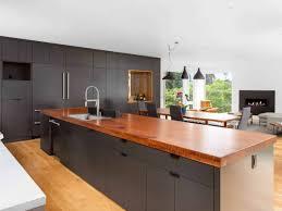 flat white wood kitchen cabinets beautiful black kitchen cabinets design ideas designing idea