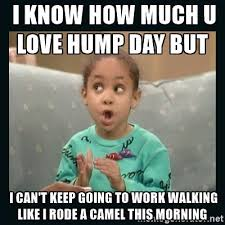 Hump Day Meme - 39 amusing hump day work memes images pictures picsmine