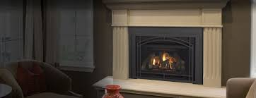 ndi gas fireplace insert series heatilator