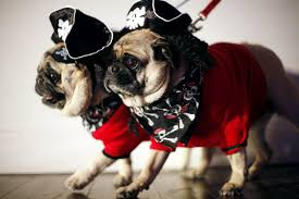 Halloween Day Usa Pups On Parade Today Com