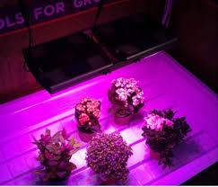 commercial led grow lights hydroponic wifi 200w 600w 800w 1000w 1200w cob full spectrum