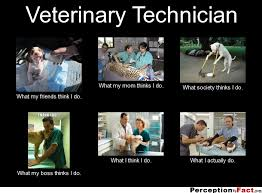 Vet Tech Memes - veterinary technician what people think i do what i really
