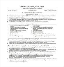 executive resume exle executive resume templates word resume sle