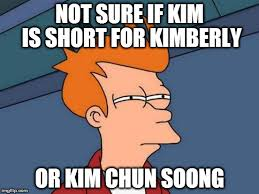 Kimberly Meme - futurama fry meme imgflip