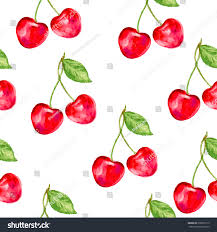 watercolor cherry ornament berry nature theme stock vector