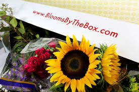 ordering flowers top 5 doubts about ordering wholesale flowers online