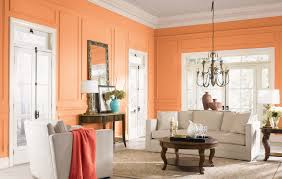 painting advice living room colors