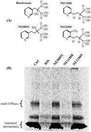 structure activity relationships for inhibition of farnesyl