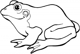 clipart of frog outline clipground
