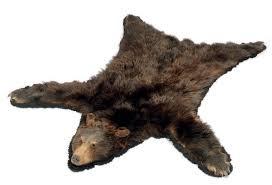 Taxidermy Bear Rug A Taxidermy Mounted Brown Bear Skin Rug Mid 20th Century