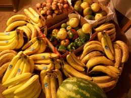 vegans living off the land garden harvest u0026 grocery hauls raw