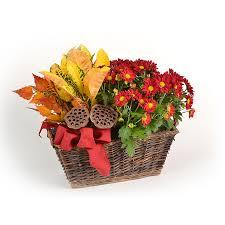 Flower Delivery Edina Mn - bachman u0027s u2022 floral gift u0026 garden