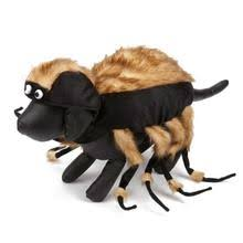 Halloween Dogs Costumes Show Jockey Saddle Dog Costume Shipping Baxterboo