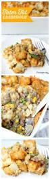 Dinner Casserole Ideas Best 25 Casserole Ideas Ideas On Pinterest Pizza Casserole
