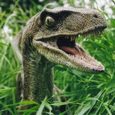 Meme Generator Velociraptor - raptor tall grass meme generator imgflip