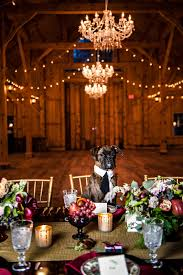 Dogs At Dinner Table Marsala Pantone Color Maine Rustic Wedding Venue