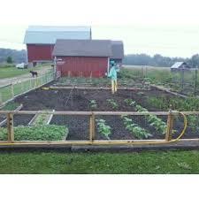 vegetable garden sandy soil