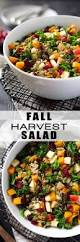 Salad Thanksgiving 25 Best Thanksgiving Salad Ideas On Pinterest Thanksgiving
