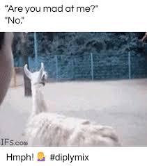Alpaca Meme Generator - 25 best memes about memes memes meme generator