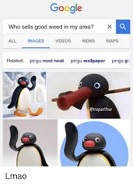 Pingu Memes - google who sells good weed in my area x images videos news maps