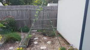 womp womp u20262015 backyard farm u2013 ancestral approach