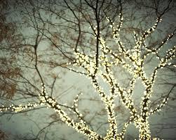 20 best winter lights decor images on winter