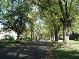 halloween city flint michigan flint u0027s east village in pictures 1 of 3 connor coyne