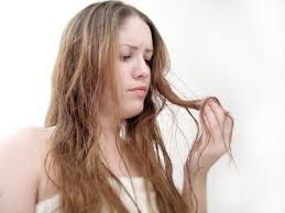 sollutions to dry limp hair remedies for damaged hair thriftyfun