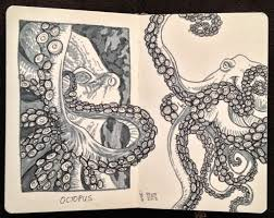 heather souliere art quick octopus sketches